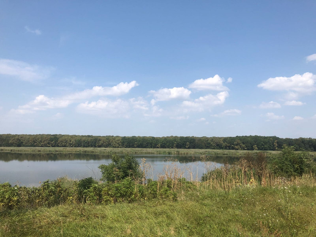 Teren cu deschidere la lac,  zona deosebita