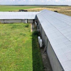 Ciupercarie si casa P+2 ce dispune de 6 ha teren agricol